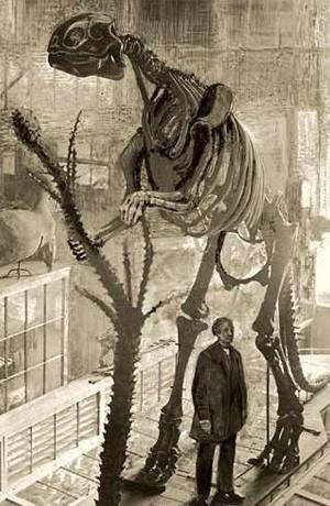 Original 1868 Hadrosaurus mount.
