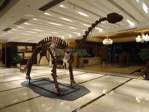 """""""Shunosaurus"""""""