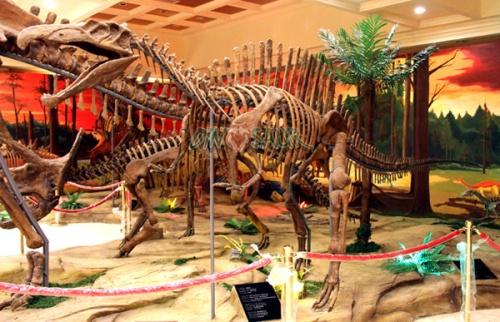 """Spinosaurus"""