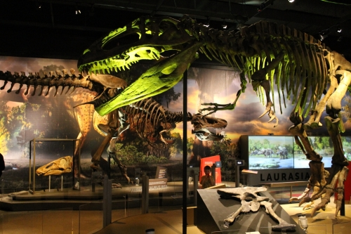 Review Ultimate Dinosaurs At The Cincinnati Museum Center