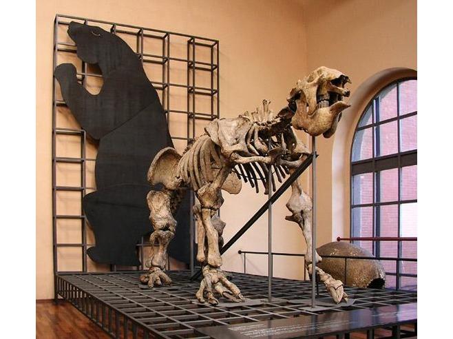 Mammals of the Pleistocene