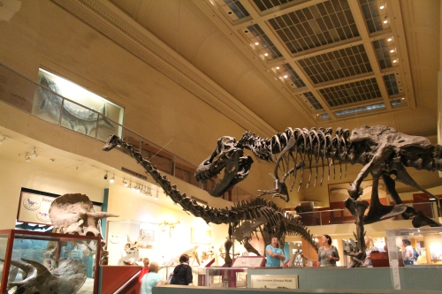 National Museum of Natural History in Washington, DC.