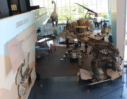 Dinosaur Mysteries from the second floor. Photo by the author.