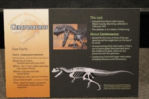 Ceratosaurus sign.
