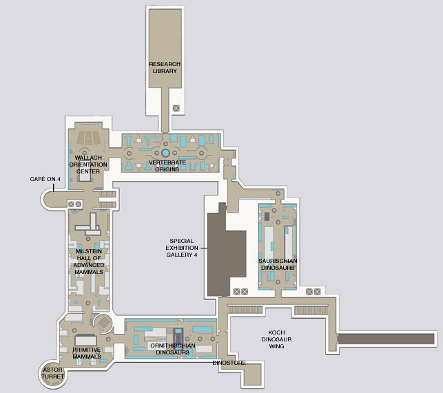 Floorplan of the American Museum of Natural History's 4th floor Fossil Halls.