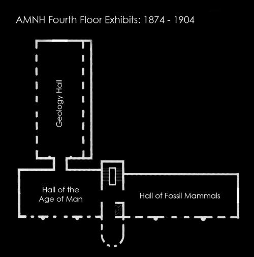 amnhmap_1891