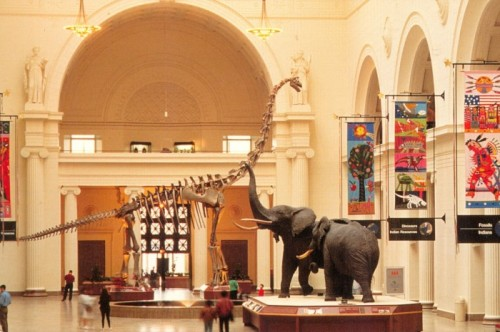 main hall brachiosaurus