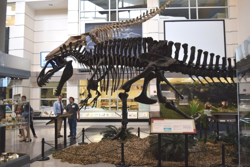 Acrocanthosaurus is photobombed by some legless mammal.