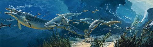 Art by Eleanor Kish. Copyright Smithsonian Institution.