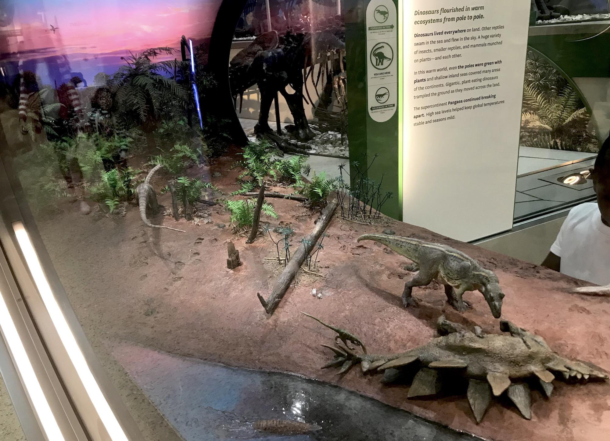 exhibits   EXTINCT MONSTERS